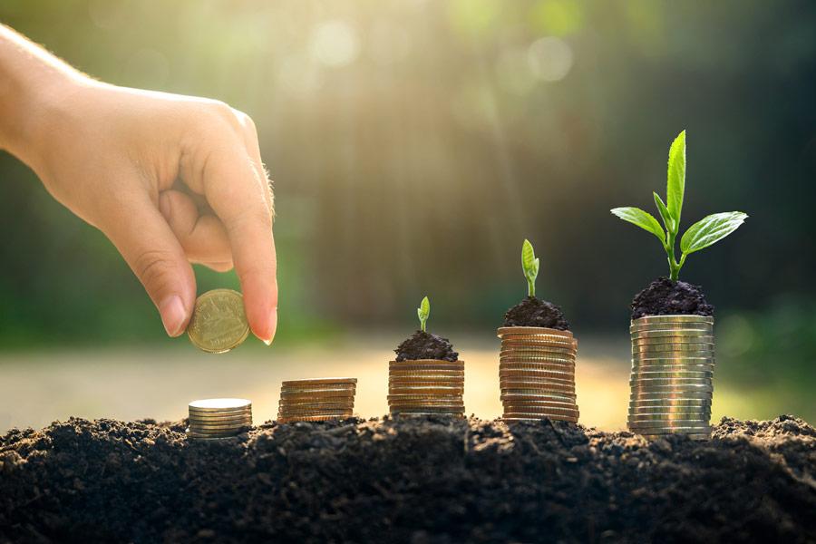investment-plan-green-startup